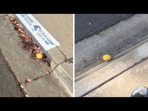 Chasing A Lemon For A Quarter Mile