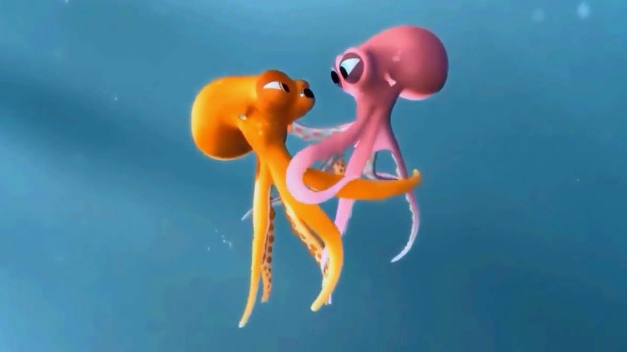 Perjuangan Cinta Seekor Gurita Octopus In Love