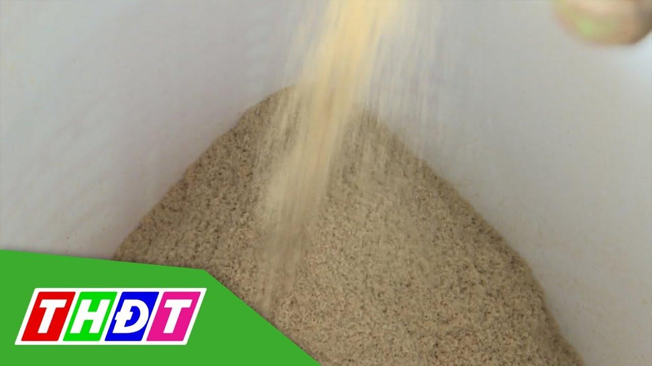 Tìm hiểu Men vi sinh cám gạo | Khoa học Công nghệ | THDT