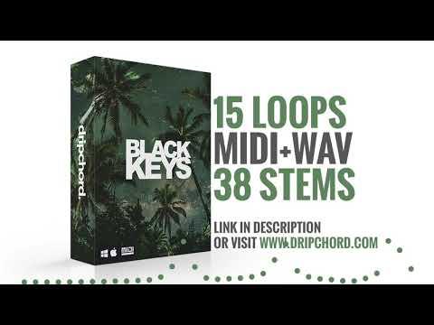 Trap Loop Pack