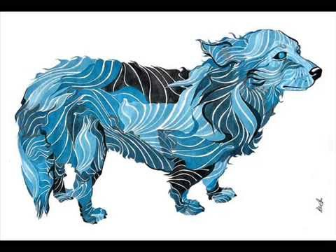 Animal Collective - Doggy (2007-07-29)