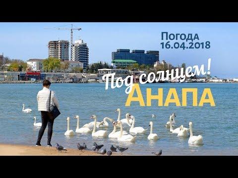 Анапа. Погода 16.04.2018 Центральный пляж. Люди загорают и купаются. Море и лебеди