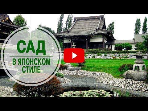 Как организовать сад в японском стиле в средней полосе? 🌟 Советы эксперта hitsadTV
