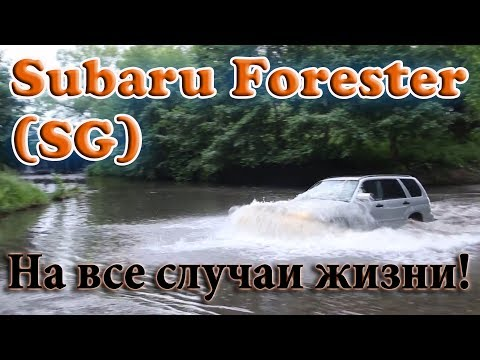 Review Subaru Forester SG (2007) - auto for all occasions