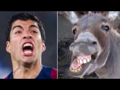 смешные фото футболистов//funny photos of football players