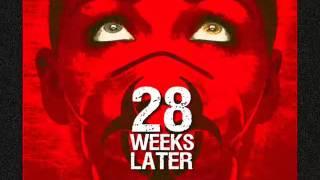 Скачать 28 Weeks Later 28 Days Later Theme Song By John Murphy