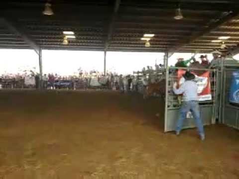 Auburn Alpha Psi Rodeo 2011 Youtube