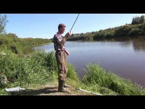 прикормка для язя весной на реке