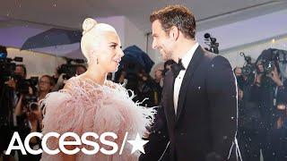 Baixar Lady Gaga & Bradley Cooper's Cutest Moments Together