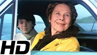 Harold and Maude • If You Want to Sing Out, Sing Out • Cat Stevens