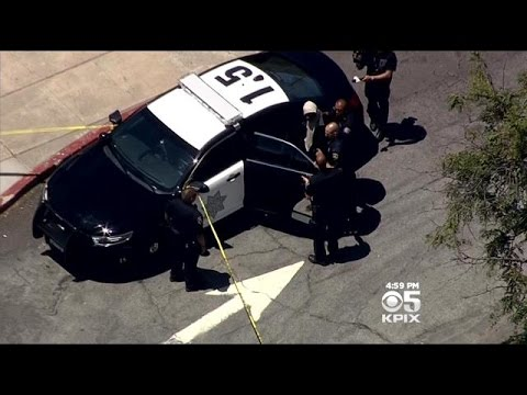 Police Arrest Suspect In Alleged Child Abduction At Milpitas Library