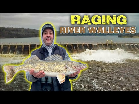 RAGING River Walleyes And LOTS Of Other Fish!!!