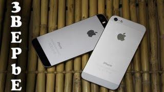 iPhone 5S Против iPhone 5
