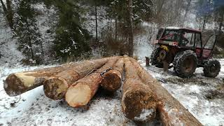Ťažba dreva - Zetor 6945
