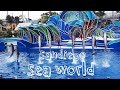 San Diego Sea World | Water Park | Sea World Review | A Classic Mom