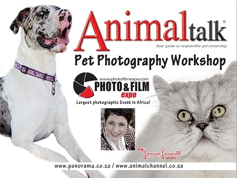 Photo & Film Expo Animal Talk Pet Photography Workshop by Louise Lacante