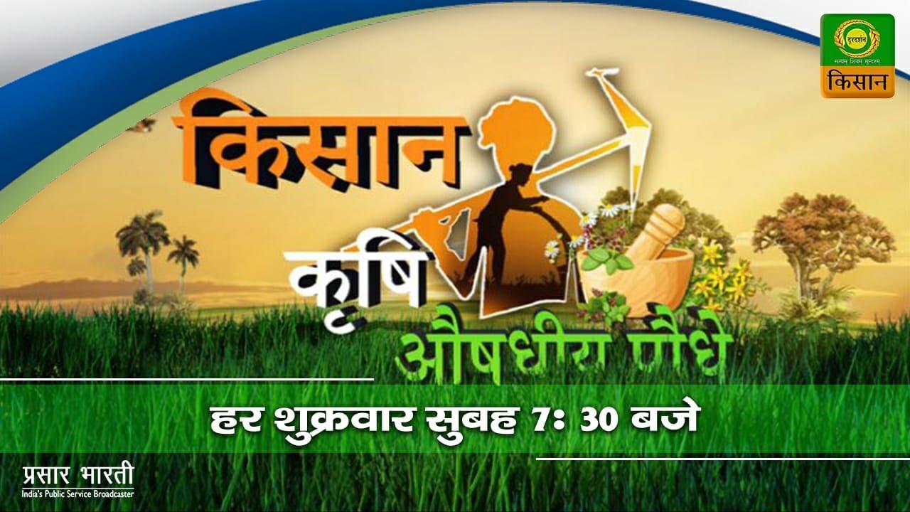 Download किसान , कृषि, औषधिय पौधे   Kisan Krishi Aushadhiya Paudhe   Episode - 14   May. 21, 2021