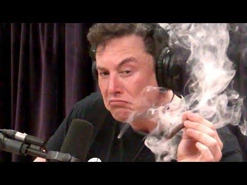 Elon Musk sagt er ist pleite, aber spendet 1 Millionen Dollar für Bäume!