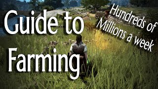 Beginner's Guide to Farming for Silver in BDO
