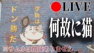 Support the stream: https://streamlabs.com/まぐにぃゲーム実況本館 ←...