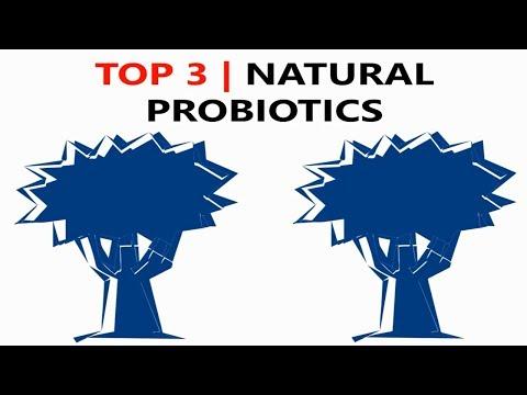 top-3-natural-probiotic-foods-(probiotics)