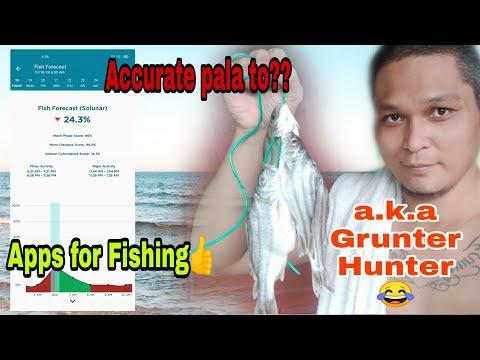 Ep#3 Accurate Kaya To Na Apps?   shore Casting #fishinginiloilo #fishingspot #pinoyanglers