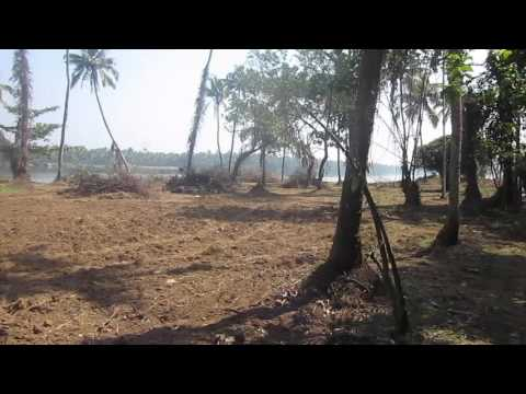 Island property near Nedubassery for sale suitable for resorts,Spa