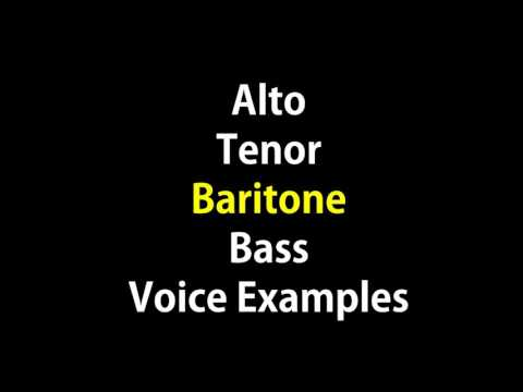 Alto Tenor Baritone Bass Vocals