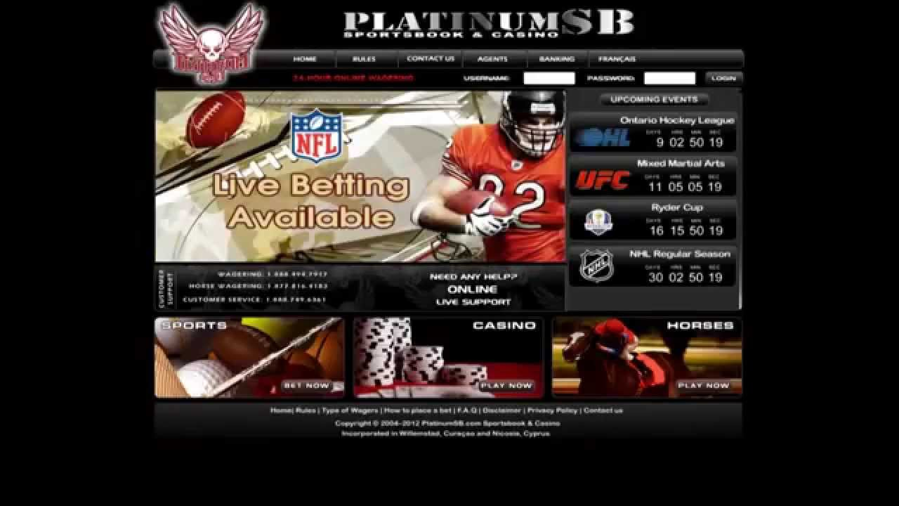 Platinum sb betting ace sports betting