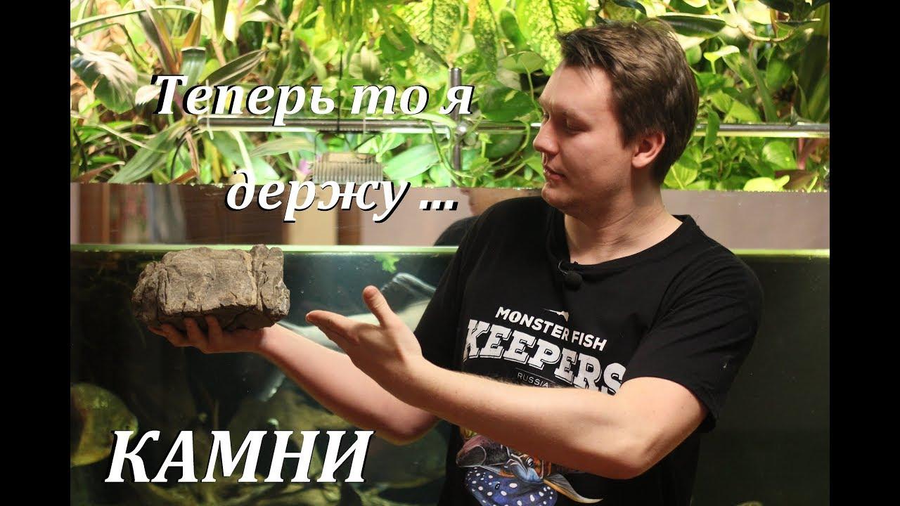 Мир аквариумных растений с Сергеем Кочетовым - YouTube
