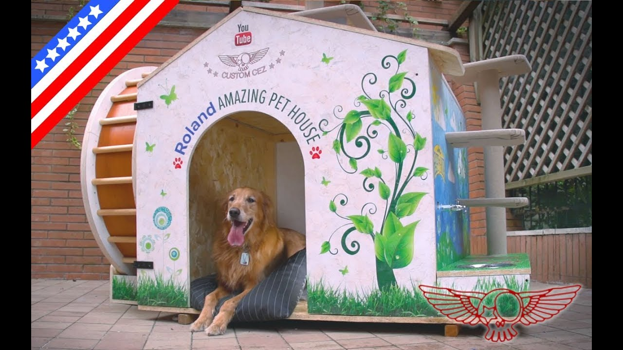 How to make an amazing diy dog house and cat jungle gym for Diy jungle gym ideas