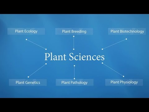 Publish with Springer in Plant Sciences