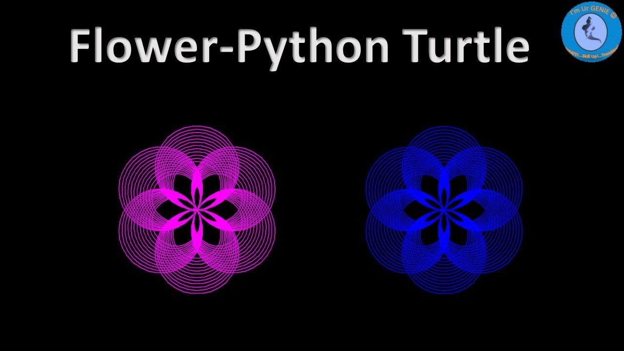 Draw multiple pattern using Python Turtle