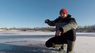 ПЕРВЫЙ ЛЁД Зимняя РЫБАЛКА на ТОНКОМ льду БЕШЕНЫЙ клёв на ХАПУГУ