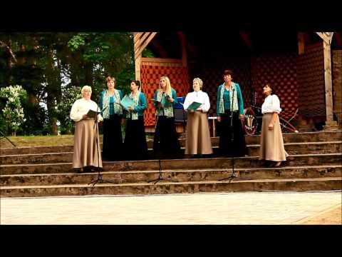 Pašdarbnieku atskaites koncerts Snēpelē   2016