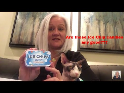 Ice Chips Candy Review with my Sphynx Cat