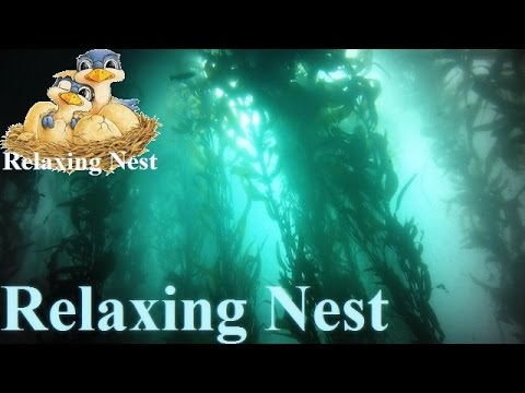 🌳Underwater Atmosphere Music, Meditation Music, Lucid Dreaming, Background Music  / ♫022