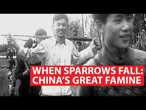 When Sparrows Fall: China