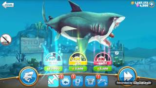 Hungry Shark World | Unlimited Gems And Gold Coins Hack! | Root And Not Rooted!