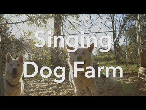 Singing Dog Farm, Inc.