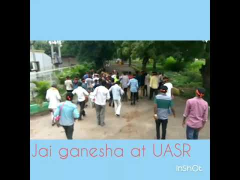 Entry of Ganesha at UAS Raichur Campus by 3rd Year Agri Dudes