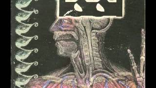 tool-schism perfect instrumental
