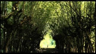 Teaser Derrière Les Murs / Behind The Walls [HD / 1080p]