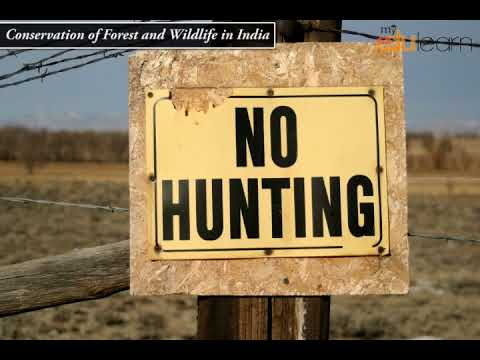 Conservation of Forest and Wildlife in India