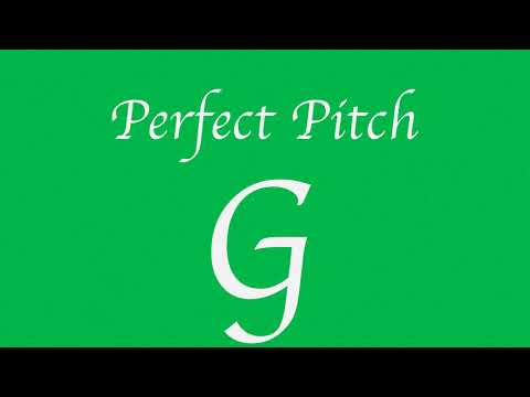 Perfect Pitch G (New)