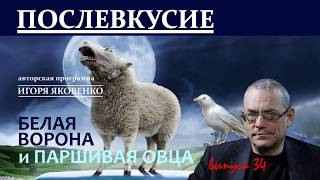 ПОСЛЕВКУСИЕ - 34. БЕЛАЯ ВОРОНА И ПАРШИВАЯ ОВЦА