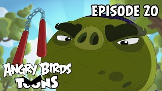 Angry Birds Toons | Brutal vs Brutal - S2 Ep20