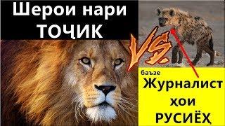 Хабархои нав! Кахрамонхои Шербачахои точик дар Россия ва русиёхии журналистони Руссия.