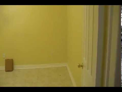 Beautiful, spacious 2 bedroom basement apartment for rent in Mississauga