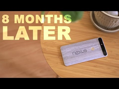 Google Nexus 6P // 8 Months Later!